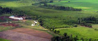 Как бесплатно получить земельный участок в России?