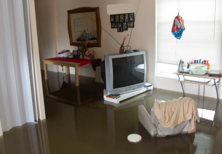арендатор затопил квартиру соседей