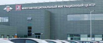 одновременно подать документы на получение гражданства РФ для взрослых и детей