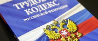 Новые поправки в ТК РФ по дистанционной работе на удалёнке
