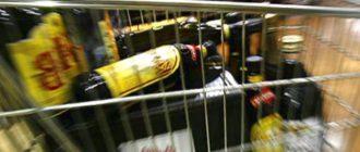 С какого возраста в России разрешена покупка алкоголя