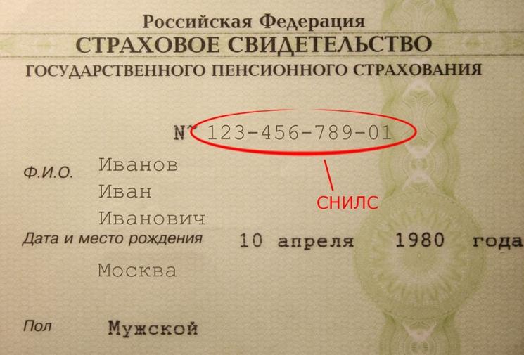 Как узнать номер СНИЛС онлайн через интернет?