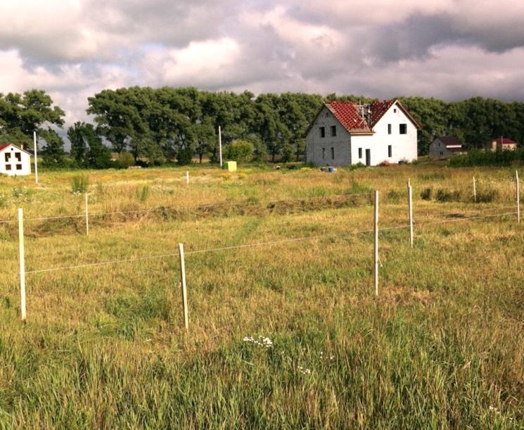 Определение границ земельного участка - как разрешить спор